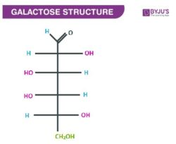 Open-Chain Form Galactose Structure