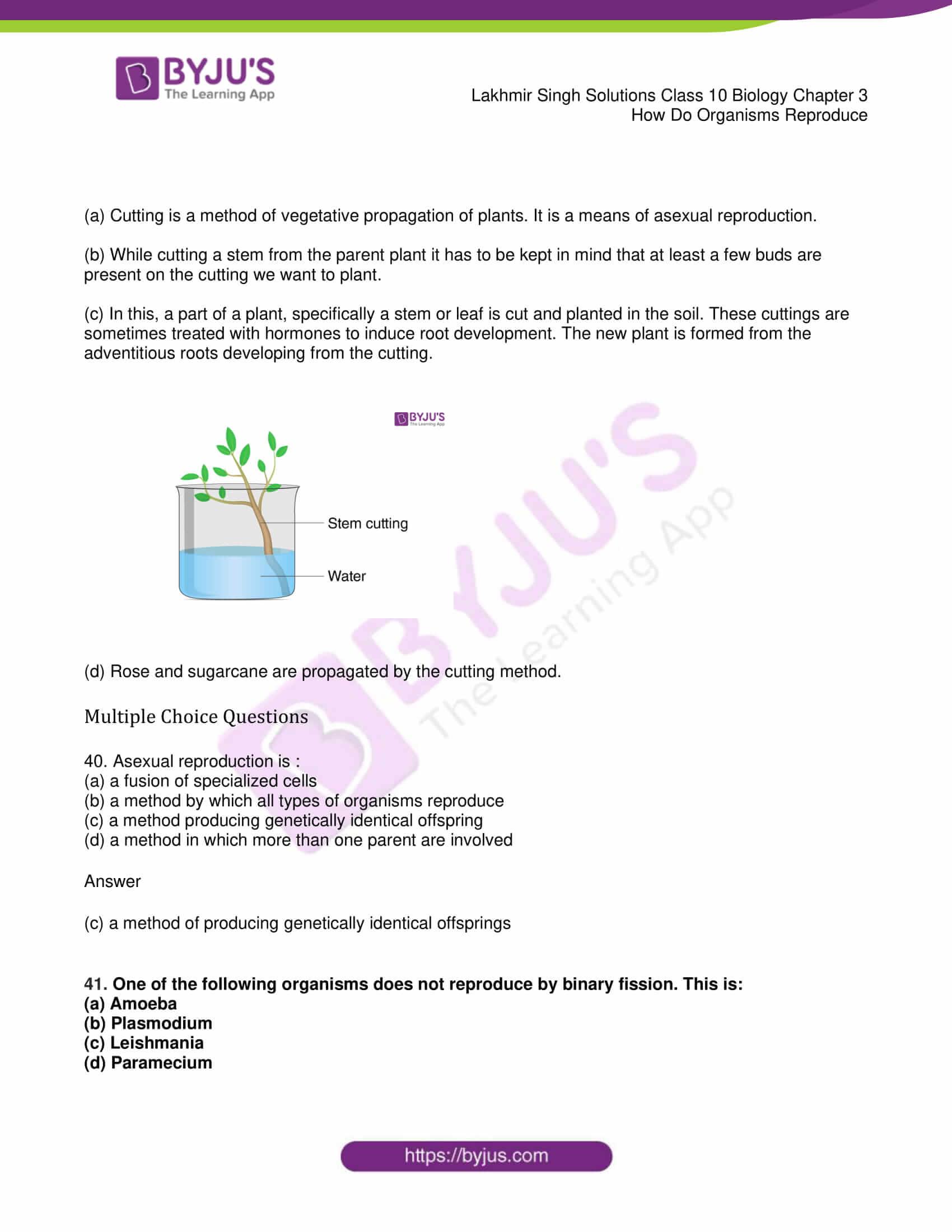 lakhmir singh solutions class 10 biology chapter 3 16
