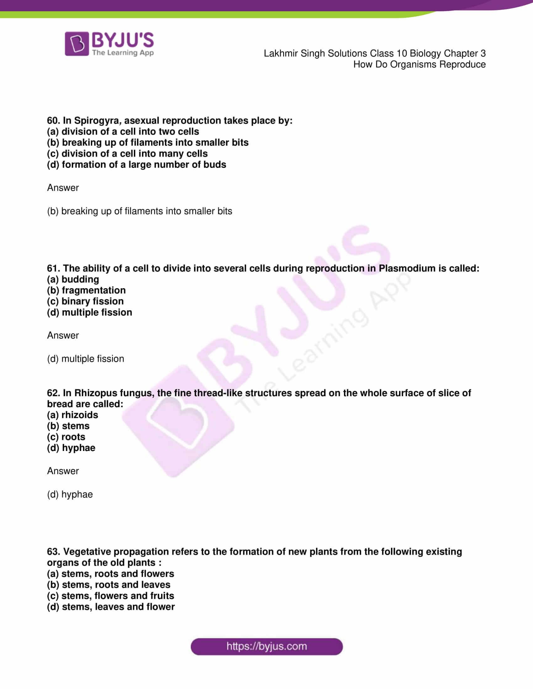lakhmir singh solutions class 10 biology chapter 3 22