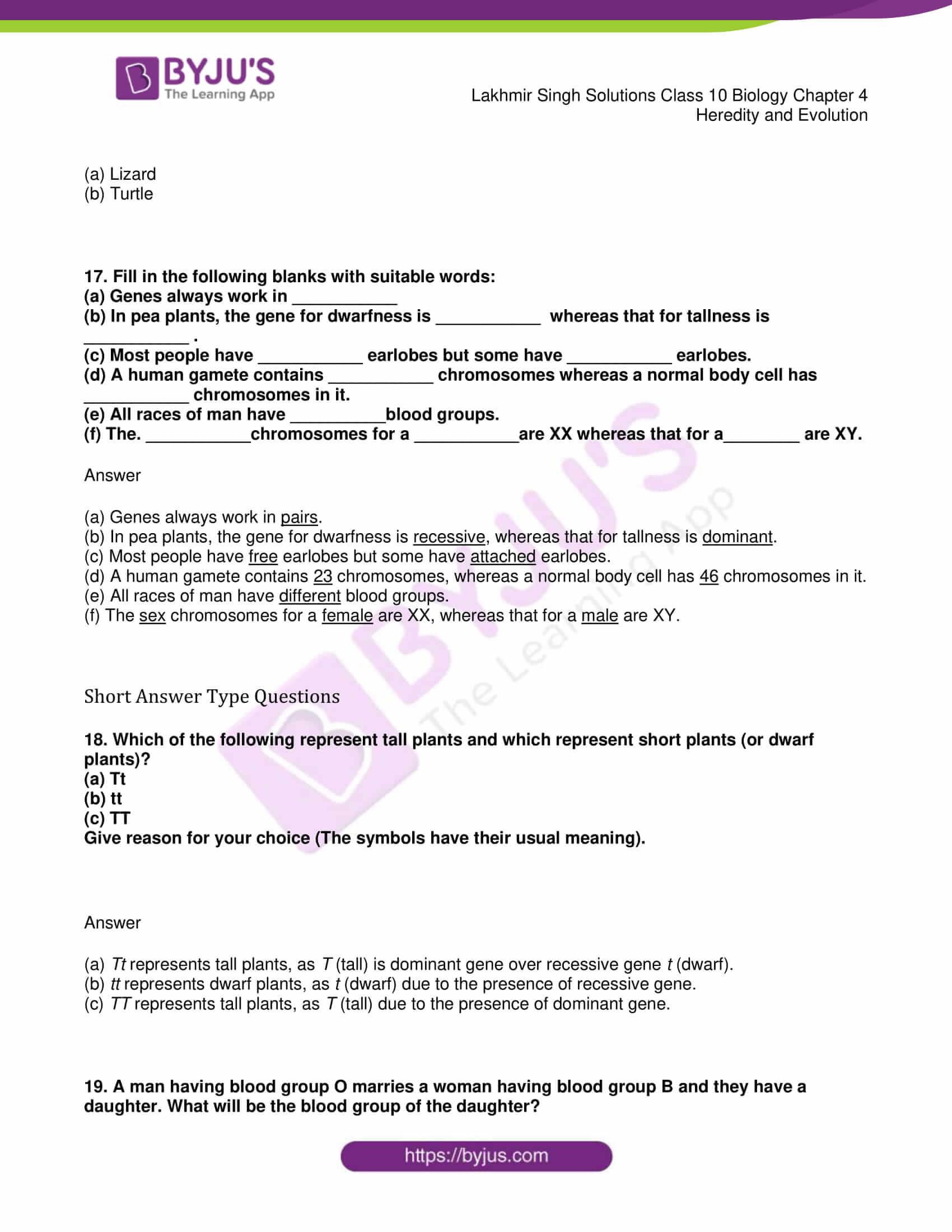 lakhmir singh solutions class 10 biology chapter 4 04