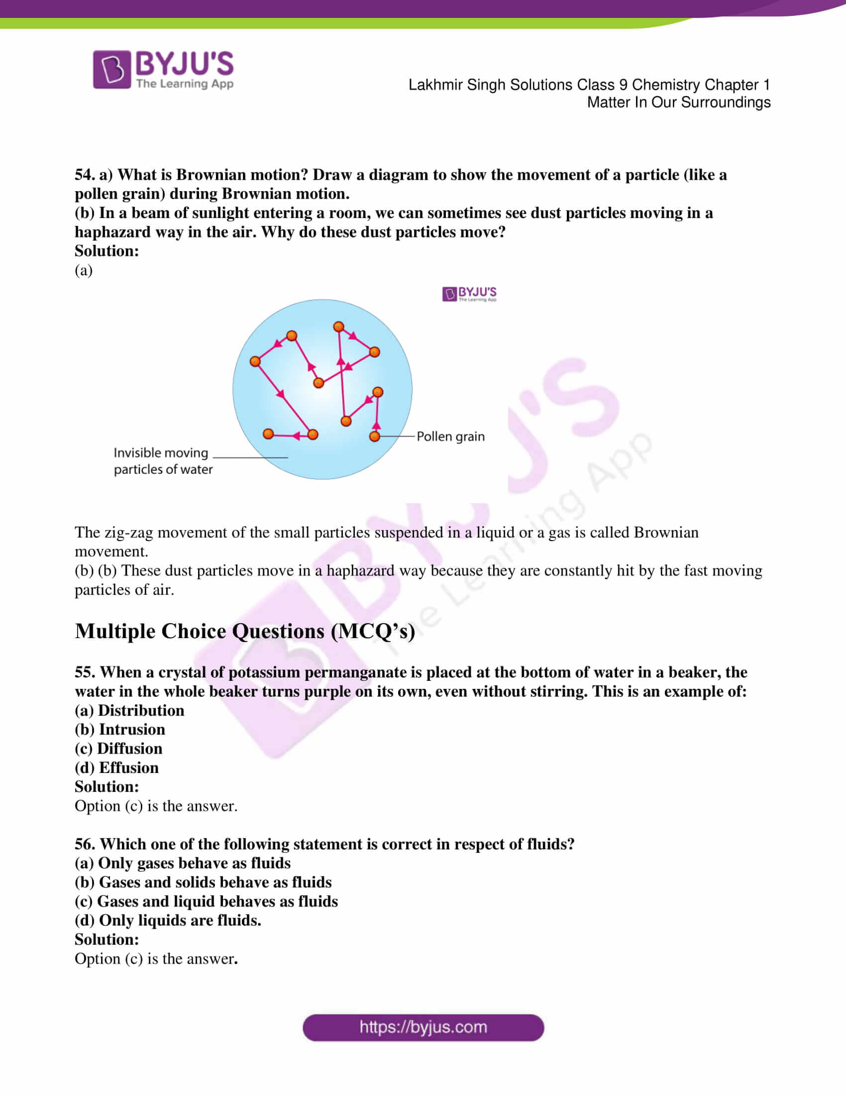 lakhmir singh solutions class 9 chemistry chapter 1 10