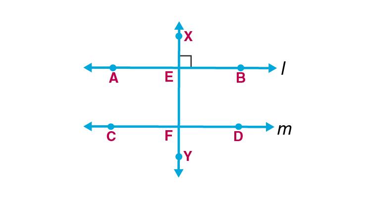 Maharashtra Board Sol Class 9 Maths p2 chapter 2-19