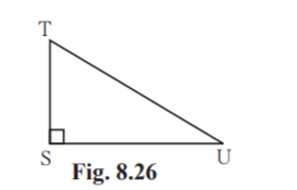 Maharashtra Board Sol Class 9 Maths p2 chapter 8-6