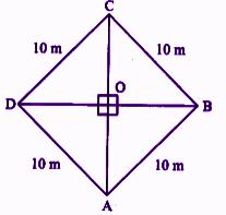 RBSE class 9 maths chapter 11 imp que 17 sol