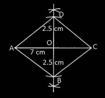 RBSE class 9 maths chapter 9 imp que 19 sol