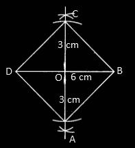 RBSE class 9 maths chapter 9 imp que 30 sol