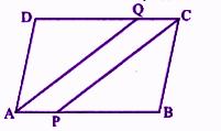 RBSE Class 9 Maths chapter 9 imp que 9