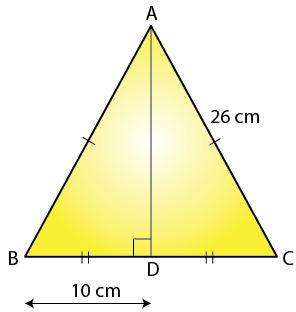 Selina Solutions Concise Maths Class 7 Chapter 16 Image 13