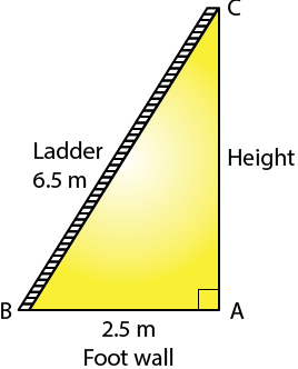 Selina Solutions Concise Maths Class 7 Chapter 16 Image 16