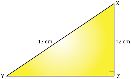 Selina Solutions Concise Maths Class 7 Chapter 16 Image 2