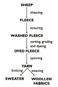 Summary of the conversion of fleece into wool