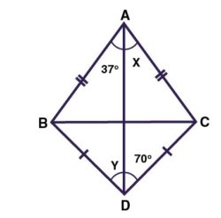 Calculate the angle x and angle y value in the given figure?