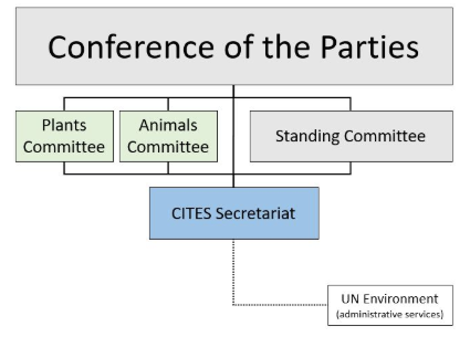 CITES - Structure of CITES