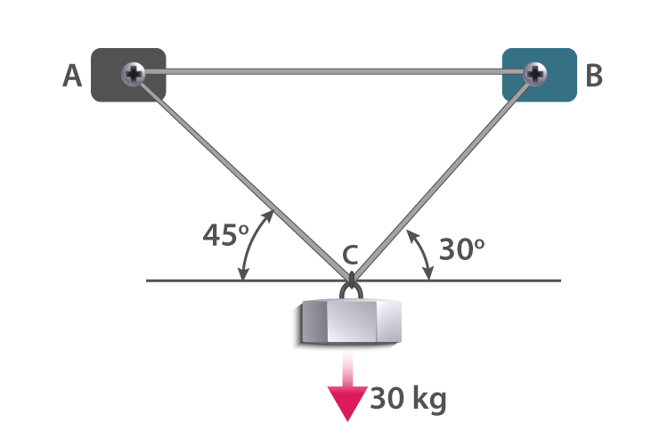 An iron block of mass 30 kg suspended by two ropes