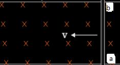 conductor in a uniform electric field