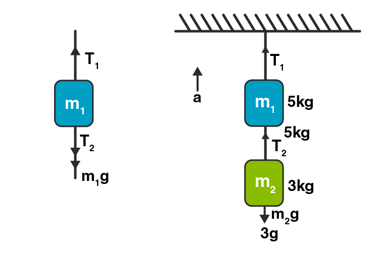 Exemplar Solution Class 11 Physics Chapter 5.12
