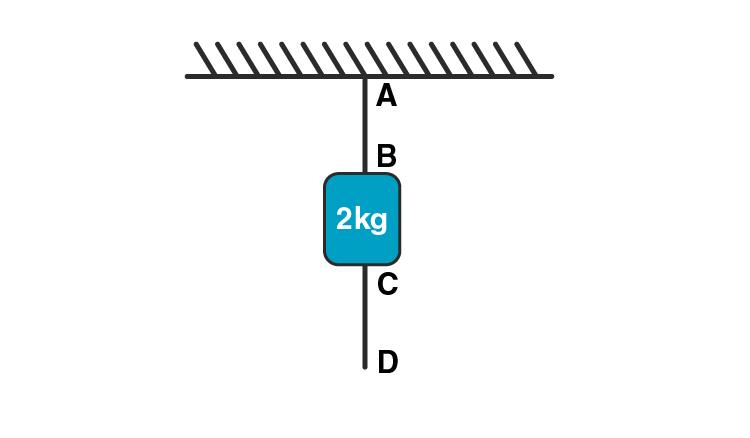 Exemplar Solution Class 11 Physics Chapter 5.19