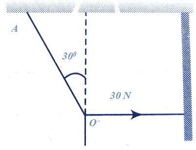 Lamis Theorem Numerical