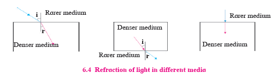 msbshse class 10 Science part 1 chapter 6 question 6 solution
