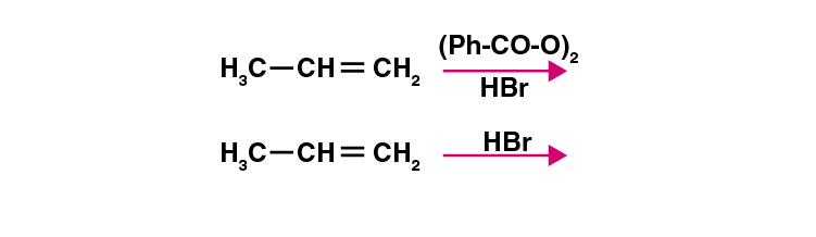 NCERT Exemplar Solutions of Class 11 Chemistry Chapter 13 Hydrocarbons-14
