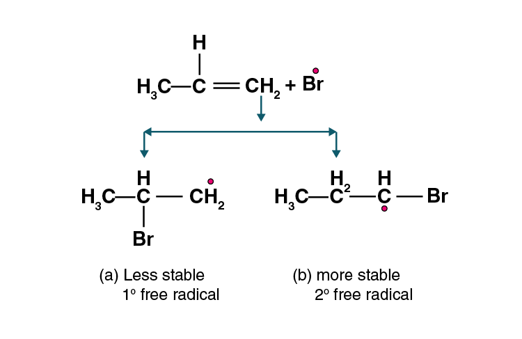 NCERT Exemplar Solutions of Class 11 Chemistry Chapter 13 Hydrocarbons-17