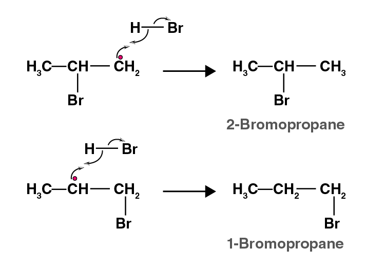 NCERT Exemplar Solutions of Class 11 Chemistry Chapter 13 Hydrocarbons-18