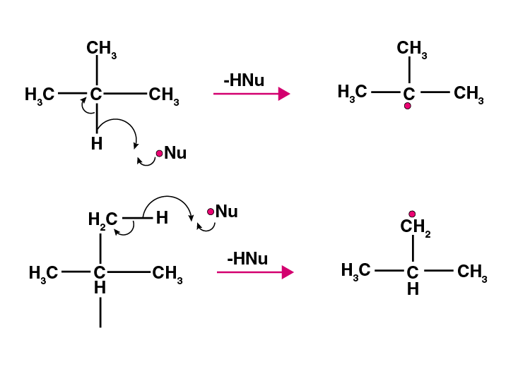 NCERT Exemplar Solutions of Class 11 Chemistry Chapter 13 Hydrocarbons-21
