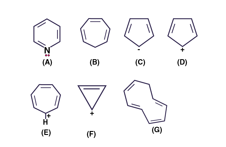 NCERT Exemplar Solutions of Class 11 Chemistry Chapter 13 Hydrocarbons-23