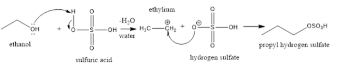 NCERT Exemplar Solutions of Class 11 Chemistry Chapter 13 Hydrocarbons-25
