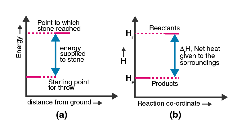 NCERT Exemplar Solutions of Class 11 Chemistry Chapter 6 Thermodynamics-4