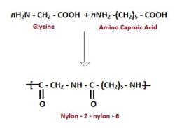 Preparation Of Nylon 2–nylon-6