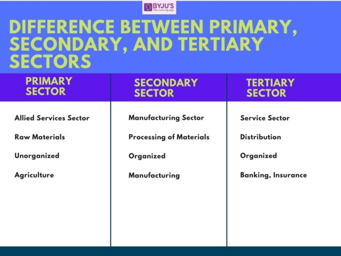 Difference Between, Primary, Secondary and Tertiary Sectors - UPSC Indian Economy