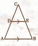 AP Class 10 Maths 2015 QP Solutions Question Number 1
