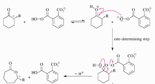 Baeyer-Villiger Oxidation