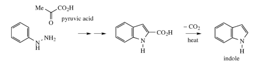 Drawbacks of Fischer Indole Synthesis