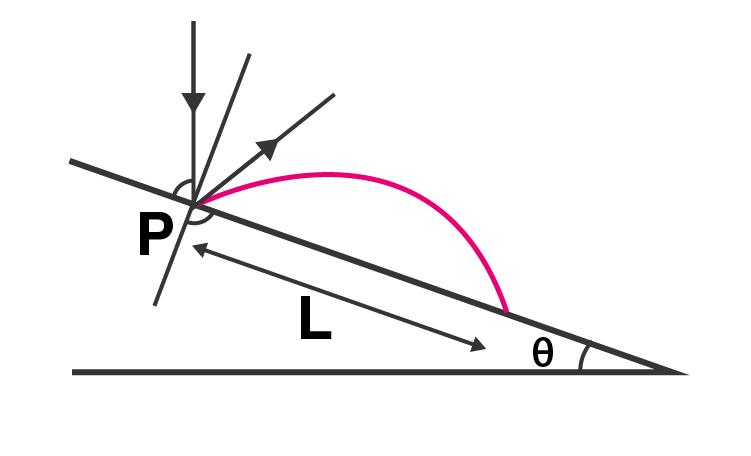 Exemplar Solutions Class 11 Physics Chapter 4 - 20