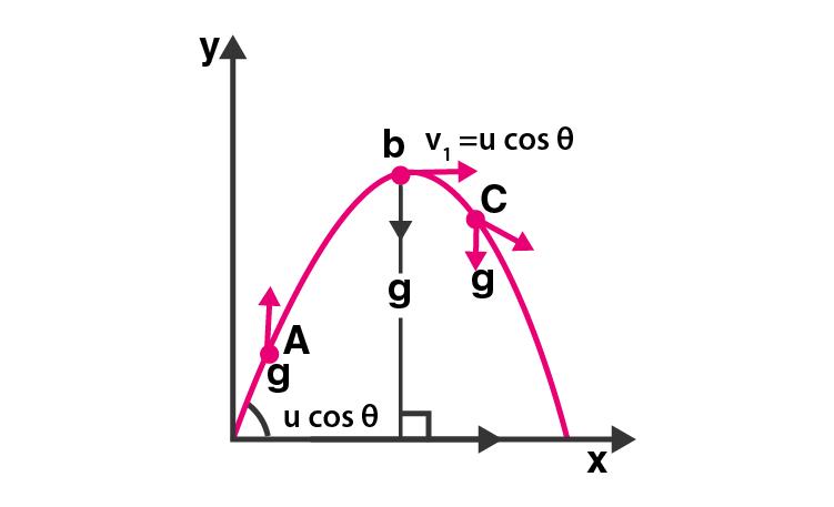 Exemplar Solutions Class 11 Physics Chapter 4 - 6