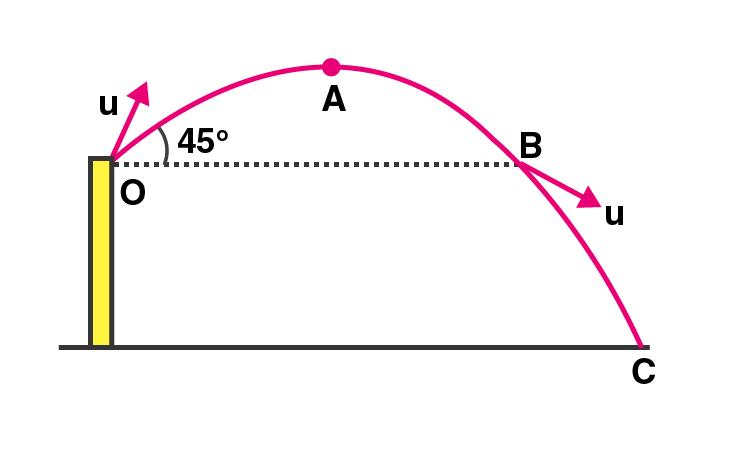 Exemplar Solutions Class 11 Physics Chapter 4 - 7