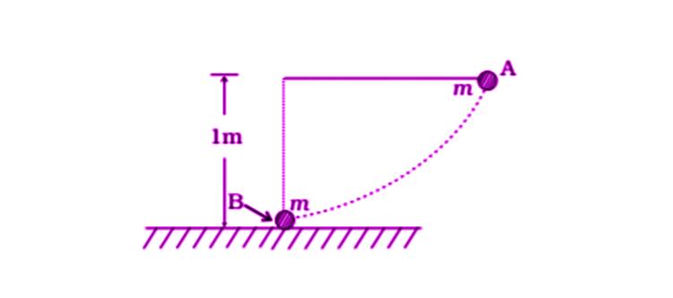 Exemplar Solutions Physics Class 11 Chapter 6 - 24