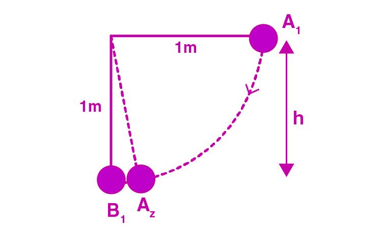 Exemplar Solutions Physics Class 11 Chapter 6 - 25