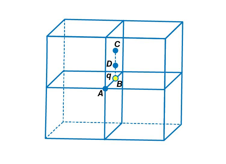 Exemplar Solutions Physics Class 12 Chapter 1 - 13
