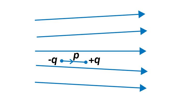 Exemplar Solutions Physics Class 12 Chapter 1 - 5