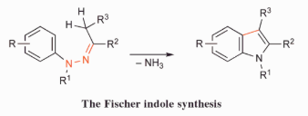 Fischer Indole Synthesis Reaction