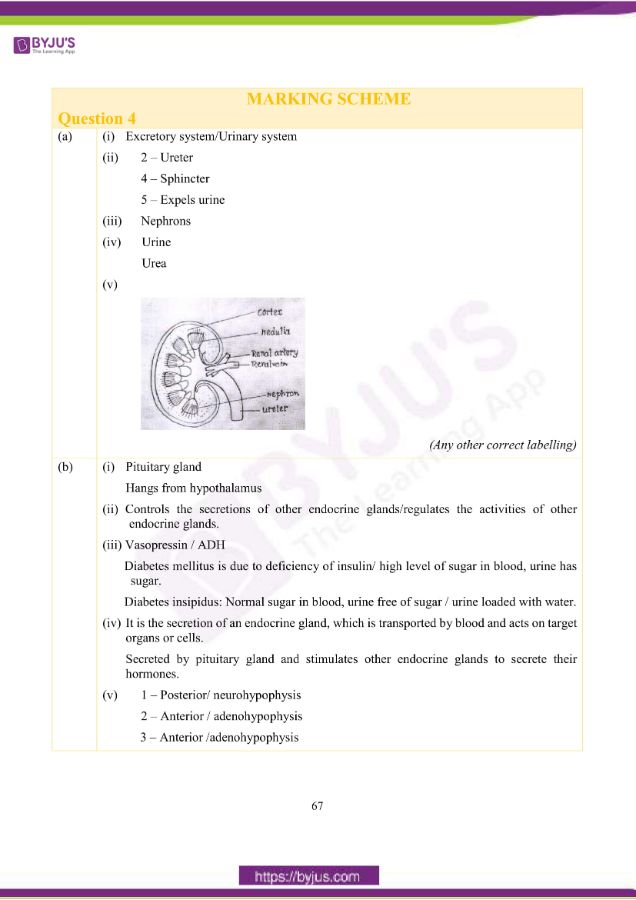 icse class 10 bio question paper solution 2019 14