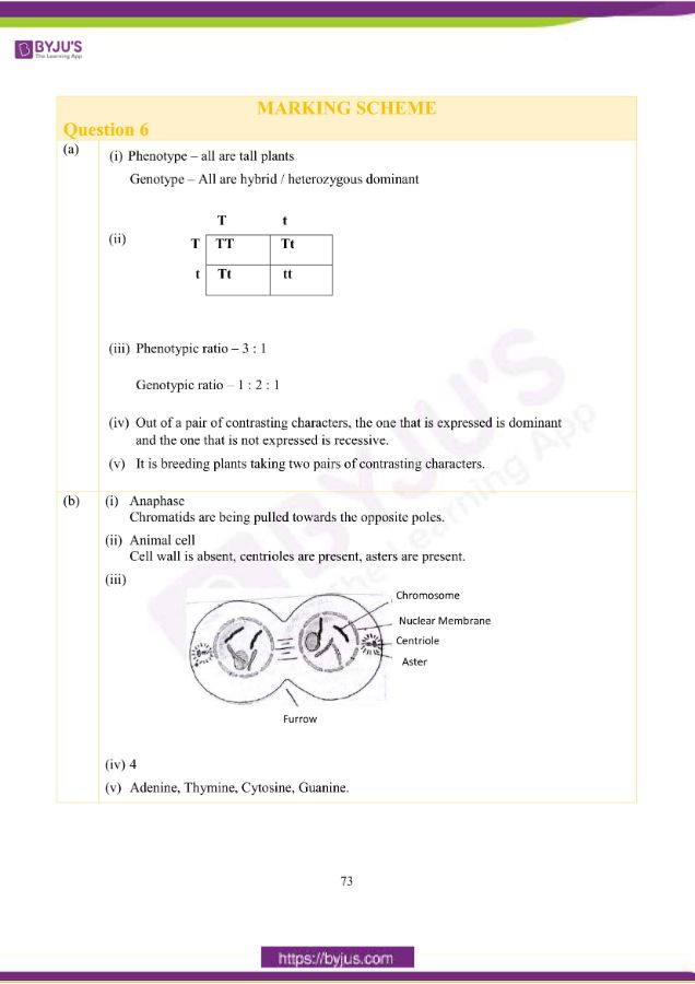 icse class 10 bio question paper solution 2019 20