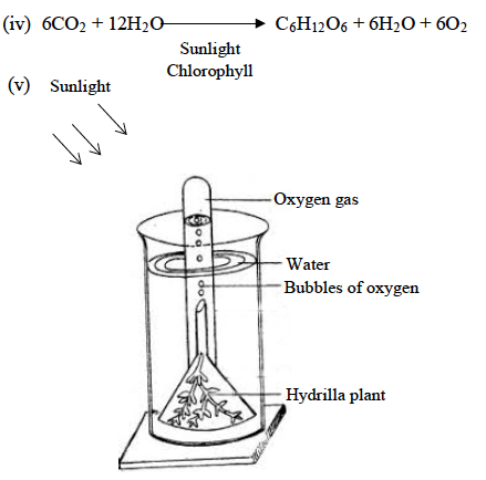 ICSE Class 10 Biology Qs Paper 2019 Solution-4