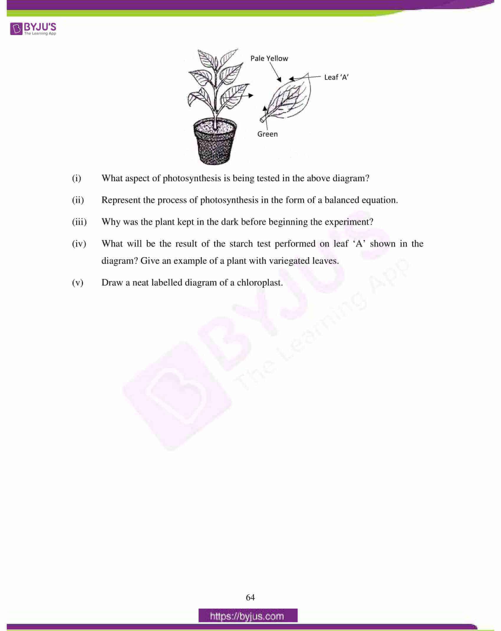 icse class 10 biology question paper solution 2018 11