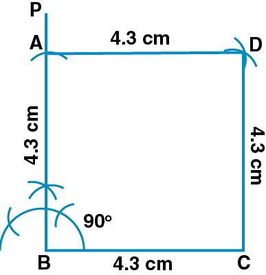 ML Aggarwal Solutions for Class 8 Chapter 14 Image 22