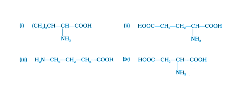 NCERT Exemplar Solutions of Class 12 Chemistry Chapter 14 Biomolecules-7