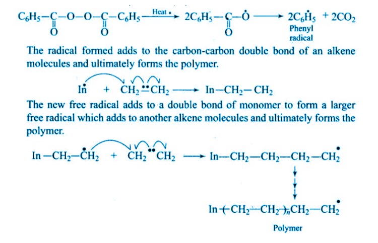 NCERT Exemplar Solutions of Class 12 Chemistry Chapter 15 Polymers-11
